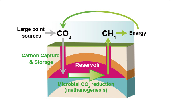 Microbial Carbon Energy Conversion Technology