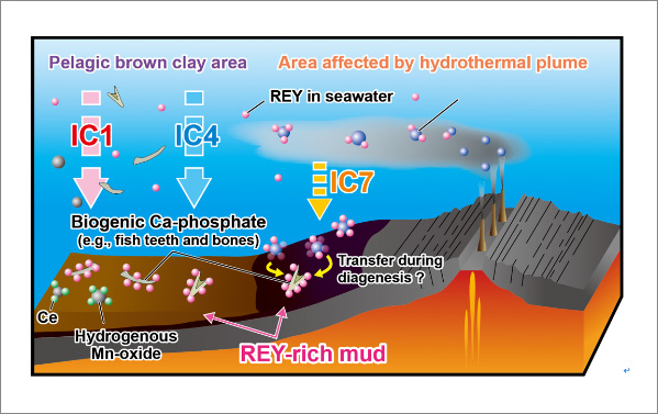 Research on genesis of seafloor mineral resources